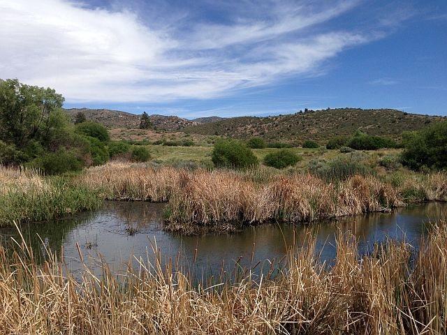 Coxey Meadow, San Bernardino Mountains