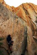 Rock Climbing Photo: Tips start