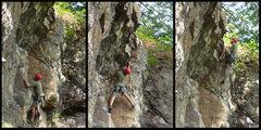 Rock Climbing Photo: jay morse onsighting