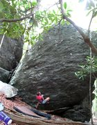 "Rock Climbing Photo: Monica pulling hard on ""Born of a Broken Hold..."