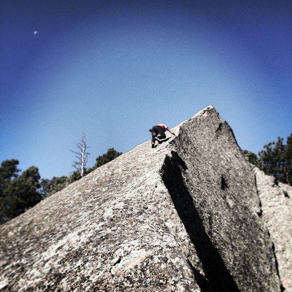 Tony Bubb nearing the top.