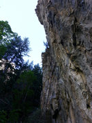 Rock Climbing Photo: The subtle, but sustained over hang of ferocious