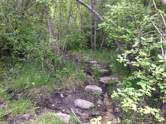 Rock Climbing Photo: Trail off the mtn bike trail. This is the left tur...
