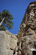 Rock Climbing Photo: Marisa Fienup arrives at the chains on the Great S...