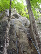 Rock Climbing Photo: the route starts between 2 trees, with the first m...