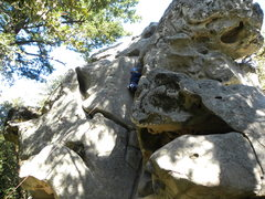 Rock Climbing Photo: Loving the sandstone