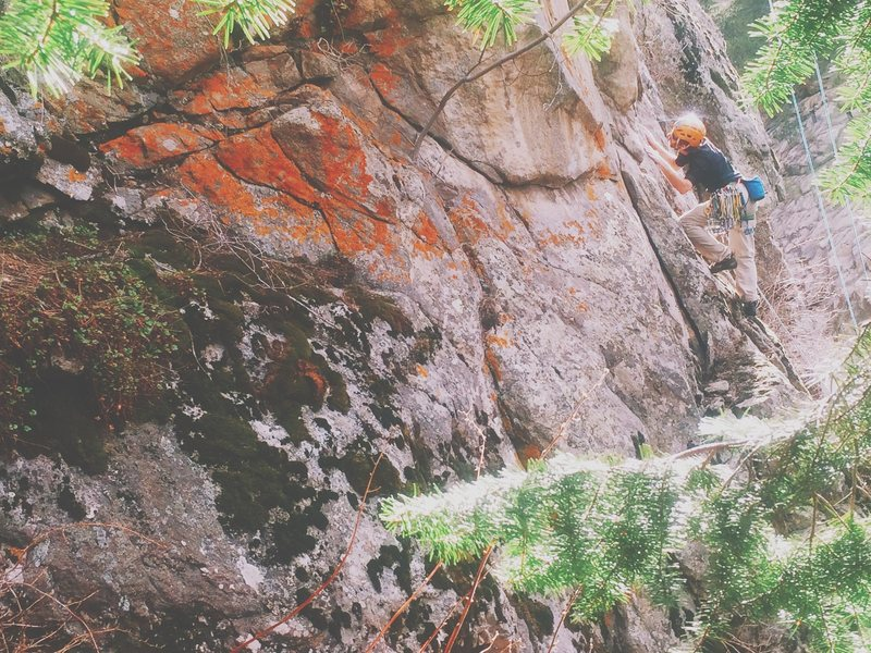 HardCor making his way past the ledge and to the first bolt of Wellness Treetment (5.11).