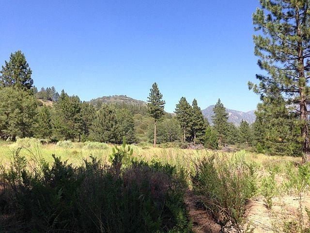 Rock Climbing Photo: Thomas Hunting Grounds (1N12), San Bernardino Moun...