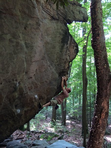 """Ray Weber gettin' """"Outshined V4"""" at Coopers Rock WV."""