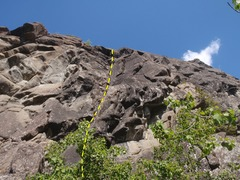 Rock Climbing Photo: Climb stright up the dihedral and throught the sma...