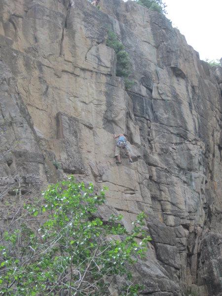 Rock Climbing Photo: Lauren Heerschap on-sights Lemon Peel, 5.10.