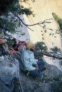 Rock Climbing Photo: Bivvy among ant trees, 1975.