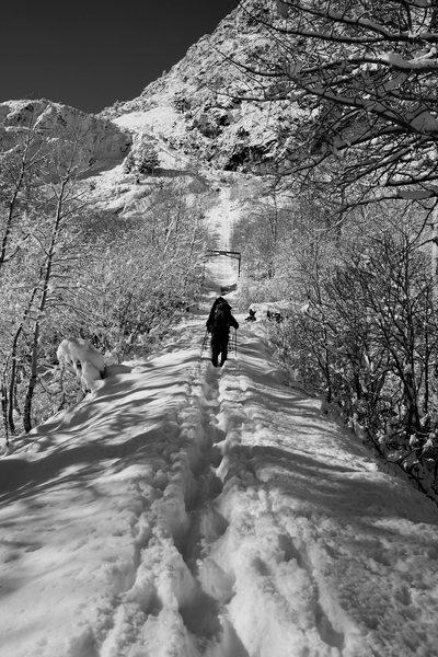 Rock Climbing Photo: Anthony Vito Fiore - Winter Wonderland - Mountaine...