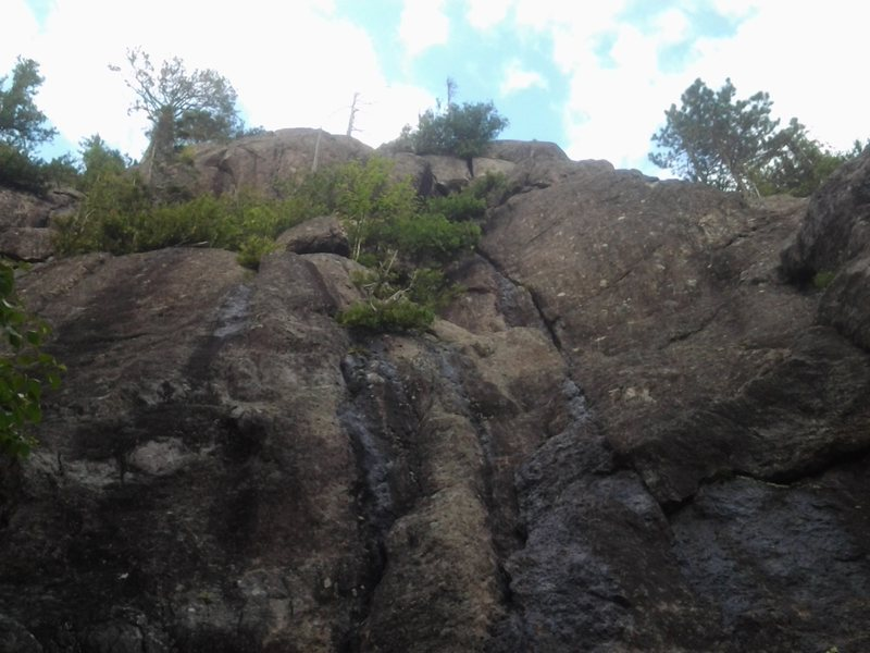 Part of west face at Carlton Peak. We backed off from setting a top rope due to combination of abrasive rock, slabbiness, and bushes.