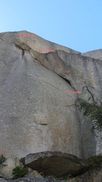 Rock Climbing Photo: Green Gecko