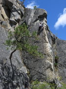 Rock Climbing Photo: Jessica T being belayed by Mandy on Don't forget A...