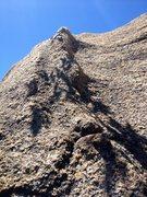 Rock Climbing Photo: Brontosaurus Back!!!