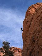 "Rock Climbing Photo: Climber with 25 ft ""clip stick"" mass pro..."