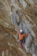 Rock Climbing Photo: Allison Fritz on the lower portion of Paleolithic.