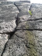 Rock Climbing Photo: Margies Curves Left, The Headstone and Margies Cur...