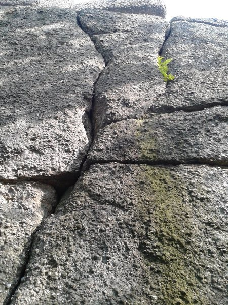 Rock Climbing Photo: Headstone is in the middle of the two vertical cra...