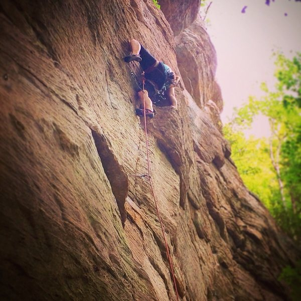 Rock Climbing Photo: Jungle Trundler