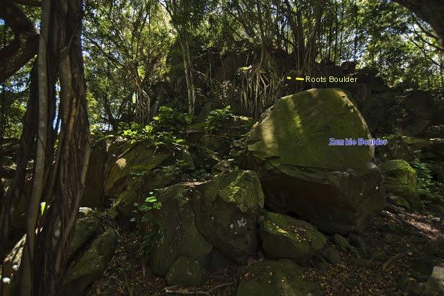 Zombie boulder