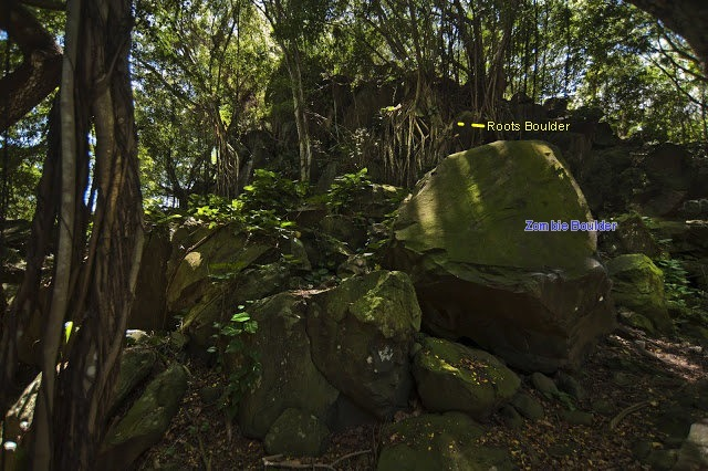 Rock Climbing Photo: Zombie boulder