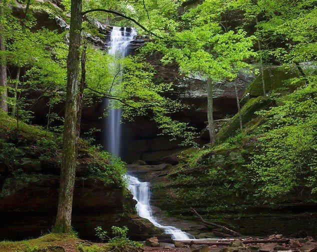 Rock Climbing Photo: The beautiful main falls of Fern Clyffe