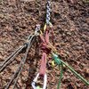 The luxurious anchor atop the second pitch. (Thanks to those who put in the hard work & effort to install this.) The end of the second pitch is thrilling all the way to the anchors. We used a single 60m & a pull cord to rap with; it seemed you could go with a 50m and a pull cord and have no problem rapping to the ground. Although from the comments, folks have made it down with a single 60m without too much problem....
