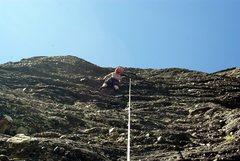Rock Climbing Photo: Brenda on Julie's Cherry.