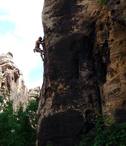 Rock Climbing Photo: Petro on the crux