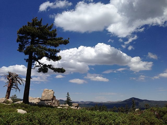 Rock Climbing Photo: Delamar Mountain from the Skyline Trail (2N10), Bi...