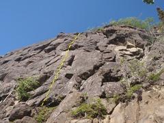 Rock Climbing Photo: Consumer Culture starts 6' right of a small tree o...