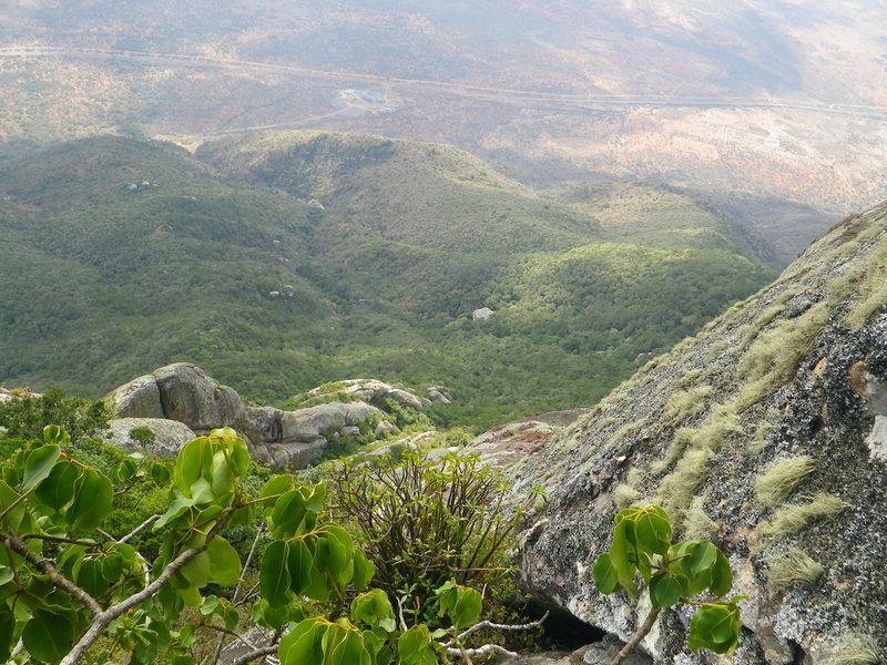 On the face of Mount Longido