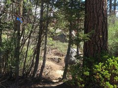 Rock Climbing Photo: The approach trail/mt bike trail passes through th...