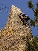 Rock Climbing Photo: tent peg