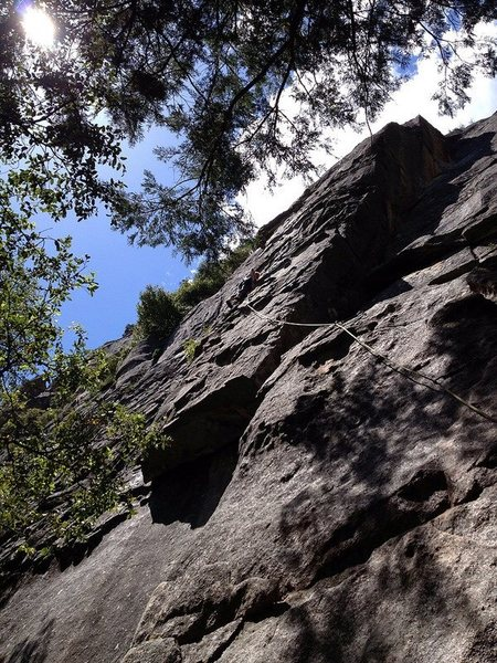 "Rock Climbing Photo: Leading ""boneheads"" in yosemite"