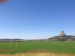 Rock Climbing Photo: The August fields of the baleful Devil's Tower, WY...