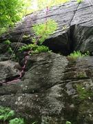 Rock Climbing Photo: Behind the tree