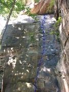 Rock Climbing Photo: Springer