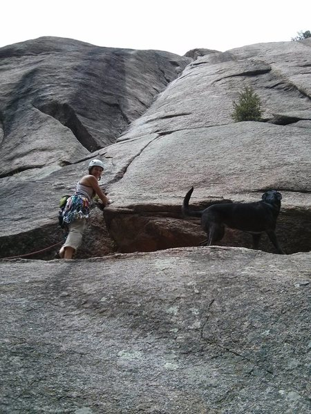 Naomi and her dog, L'Hopitol, ready to send the classic dihedral.
