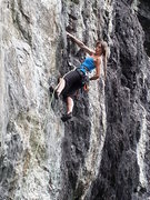 Rock Climbing Photo: Beautiful Mag resting in White Snake.