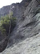 Rock Climbing Photo: FA of Red Marrow