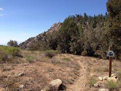 Rock Climbing Photo: PCT and the Coon Creek Jumpoff, San Bernardino Mou...