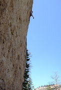 Rock Climbing Photo: Alan Goodrich hanging on for the send