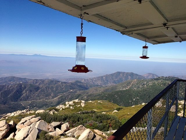 The view from the fire lookout (1N96), Keller Peak