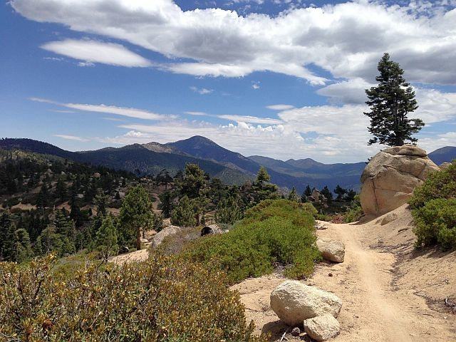 Skyline mountain bike trail, Big Bear South