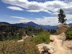 Rock Climbing Photo: Skyline mountain bike trail, Big Bear South