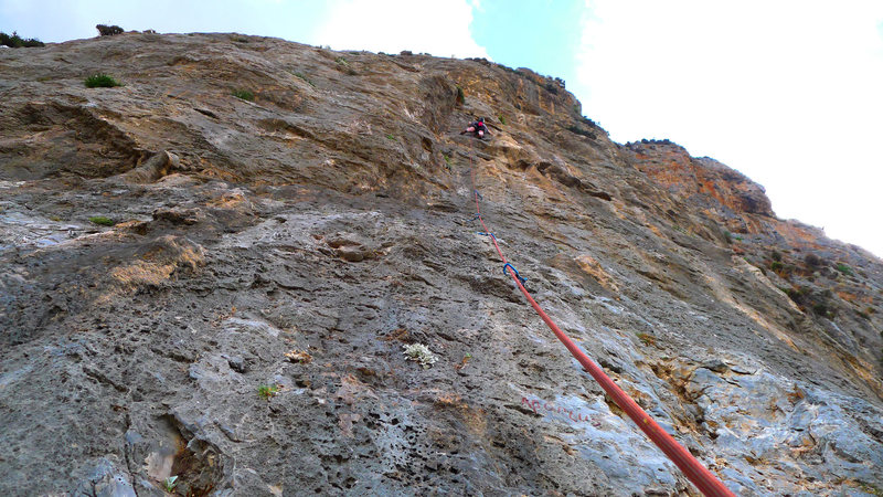 Climber on Apoplus.